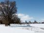 Rügen im Schnee 2013